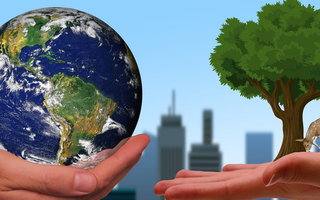 Down to Earth Sustainability